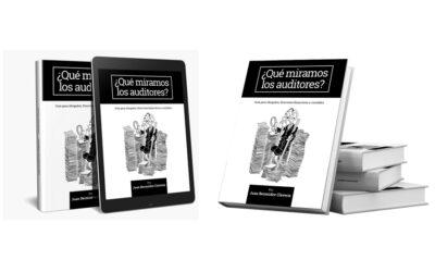 Guía Auditoría ¿Qué miramos los Auditores?